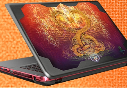 "Lap top skin "" State of Love "" Design"